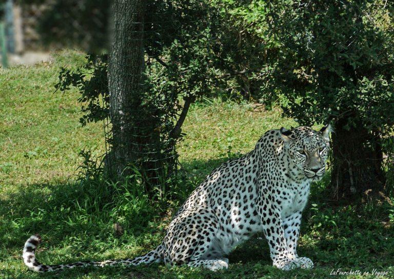 Zoo de la Barden6