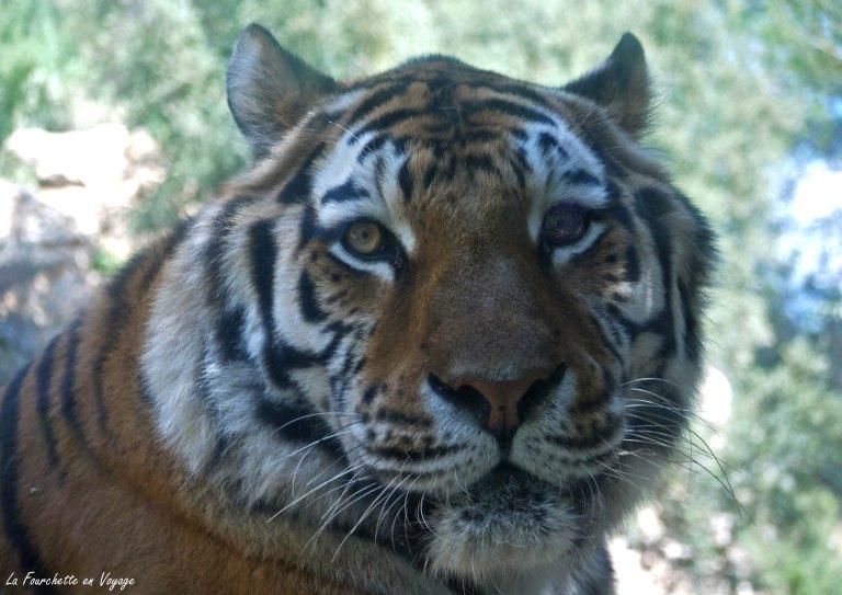 Zoo de la Barden8