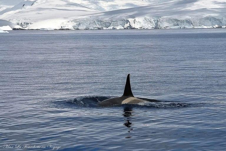 Antarctique HDR10w