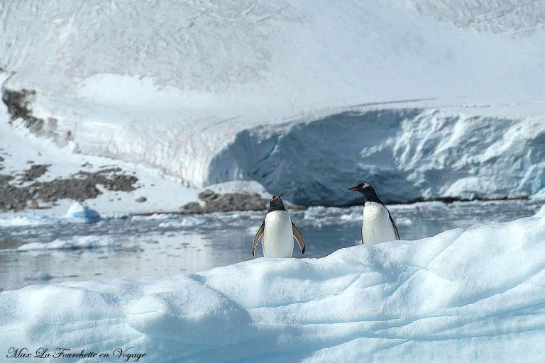 Antarctique HDR18w
