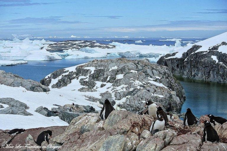 Antarctique HDR41w
