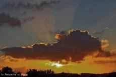 Versailles les jardins, soleil couchant en janv 17